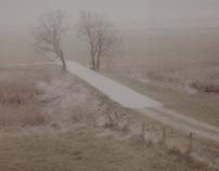 Landscapes VI