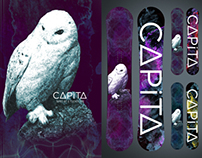 CAPiTA Birds of a Feather