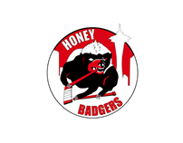Honey Badgers - Branding & Identity