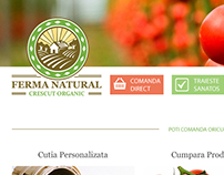 Organic Vegetables Farm Shop/Website Layout