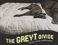 A Place for us Greyhounds Poster Campaign