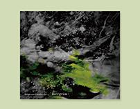 mergrim / Intersect Landscape...