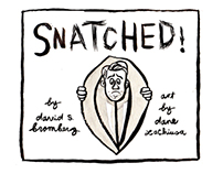 SNATCHED! by David S. Bromberg/Dane LaChiusa