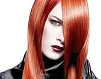 Lakme hair collection 2013