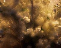 Floral Fog