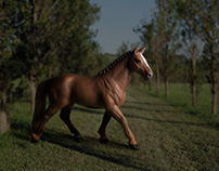 Stubbs Horses