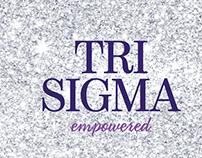 Tri Sigma Video - Conference