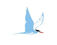 Logo STeRNA