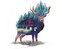 red deer - double exposure