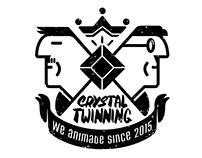 Crystal Twinning Studio