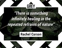 GREY Instagram Quote Designs