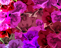 multi coloured illustrated floral pattern