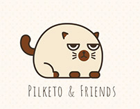 Pilketo & Friends
