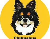 037 | Chihuahua (Black & Tan)