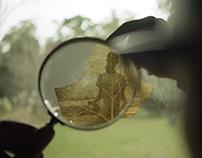 La Selva / Elección de vida