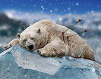 Dead polar bear - photoshop manipulation