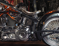 Customized bike