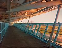 Arquibancada Autódromo de Interlagos