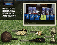 Fotbal Adevarat (Timisoreana) - 2010