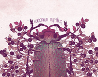 Vaccinium myrtillus *