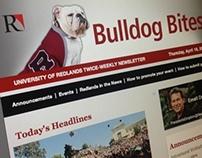Bulldog Bites eNewsletter Redesign 2013