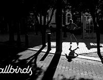 All Birds _ Runners High