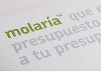MOLARIA'S IDENTITY