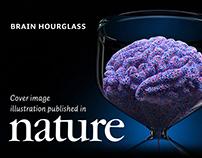 Brain Hourglass