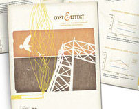 Cost & Effect Brochure