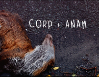 'CORP+ANAM' OPENING TITLE SEQUENCE & PROMO