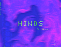 Hinds gig poster