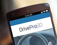 DrivePro30 - An app for systematic licensing