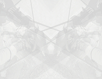 PARALLEL UNIVERSE X GEMINI MMXIII