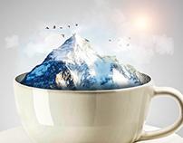 Tea Cup Study