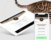 Pet Academy UI - Gamification