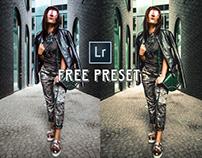 Free Retro Style Lightroom Preset