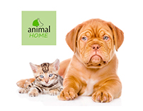 Triptico, Tarjetas de visita y camisetas, Animalhome