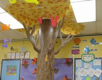 Jefferson Elementary School: Trees / Kindergarten Rms