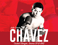 Mexican Boxing Legends - GRAPHICS.