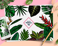 Tropical leaves collection.
