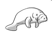 Manatee or sea cow Endangered Wildlife Cartoon