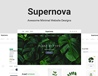 Supernova – Awesome Minimal Website Designs