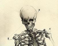 [Drawing] Para pôr o silêncio em teu peito