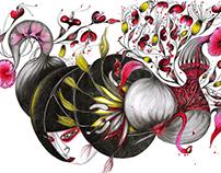 "Illustration ""Chinese Jellystar"""