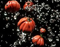 Tomato CGI
