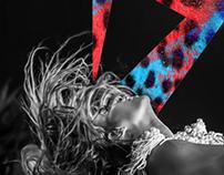 Beyoncé Mrs.Carter Branding