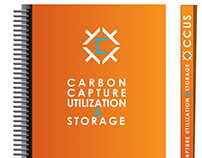 Carbon Capture Utilization and Storage concept design