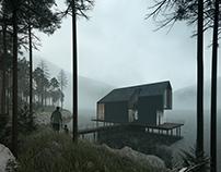 The foggy Lake house