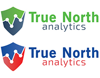 "Logo ""True North Analytics"" (BETA 1)"