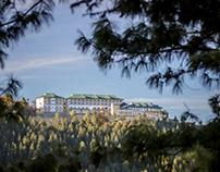 Taj Theog Resort & Spa